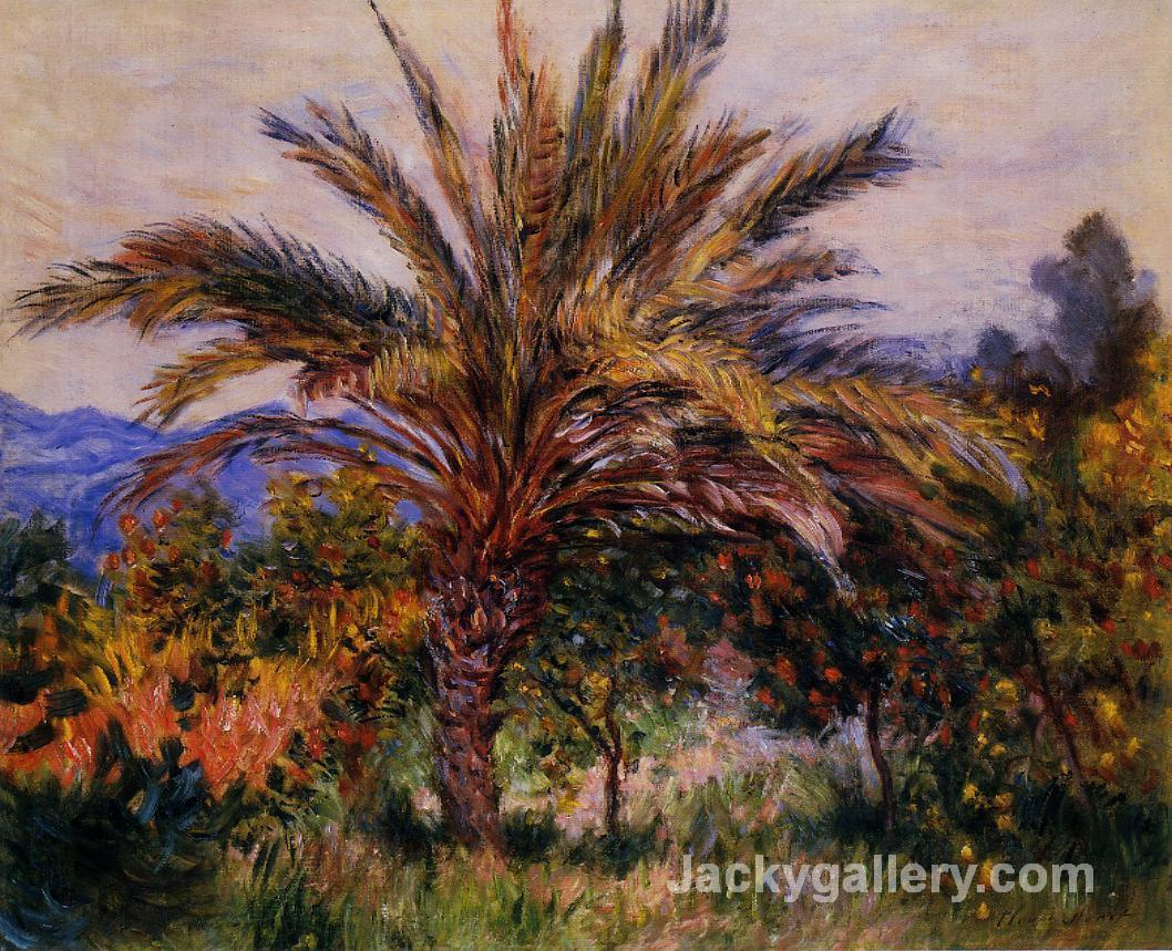A Palm Tree at Bordighera by Claude Monet paintings reproduction