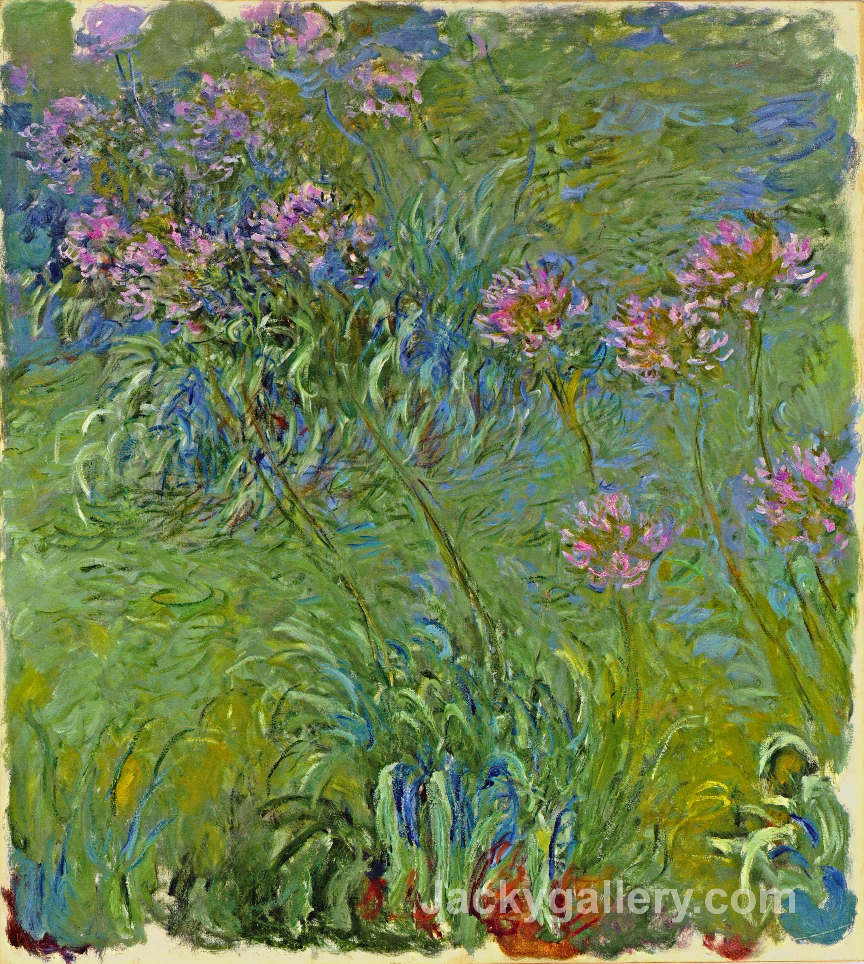 Agapanthus Flowers by Claude Monet paintings reproduction