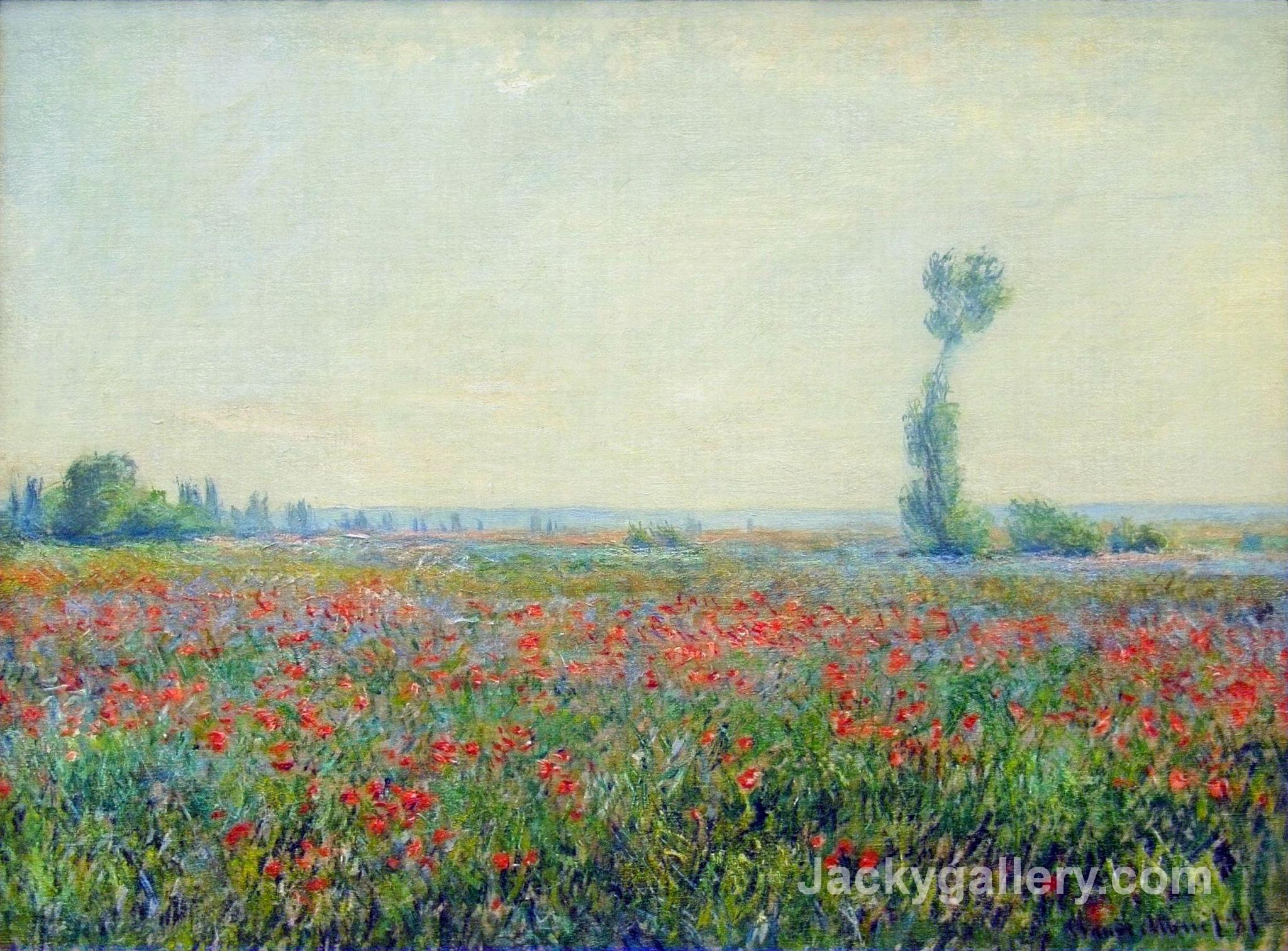 Poppy Field by Claude Monet paintings reproduction