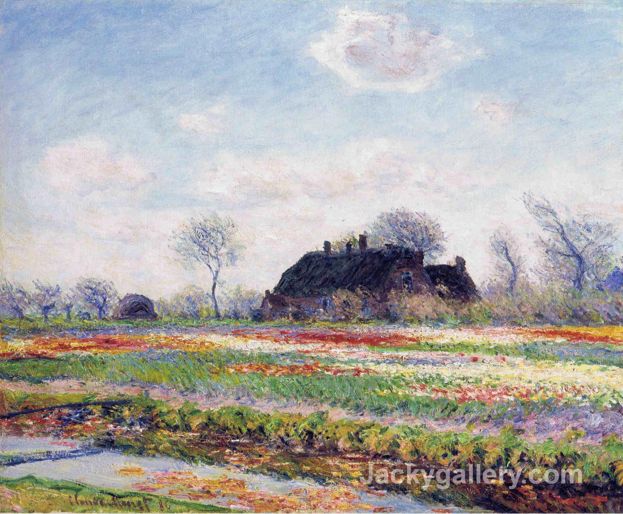 Tulip Fields at Sassenheim, near Leiden by Claude Monet paintings reproduction