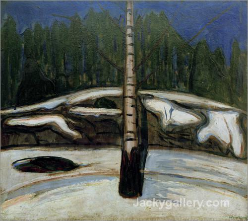 Birch in snow by Edvard Munch paintings reproduction