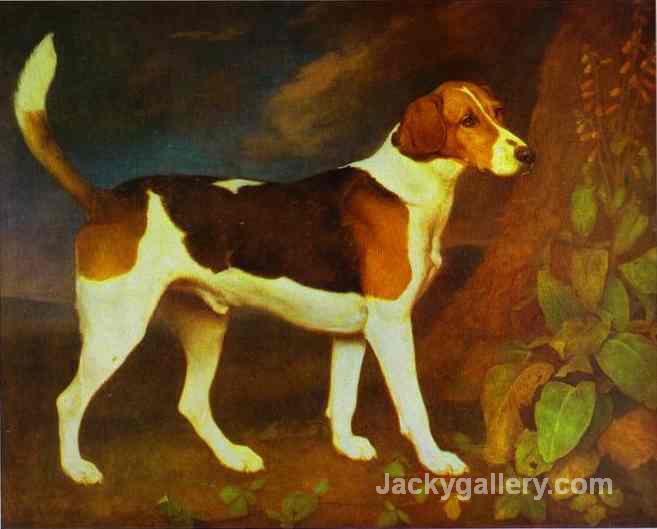 A Foxhound, Ringwod by George Stubbs paintings reproduction