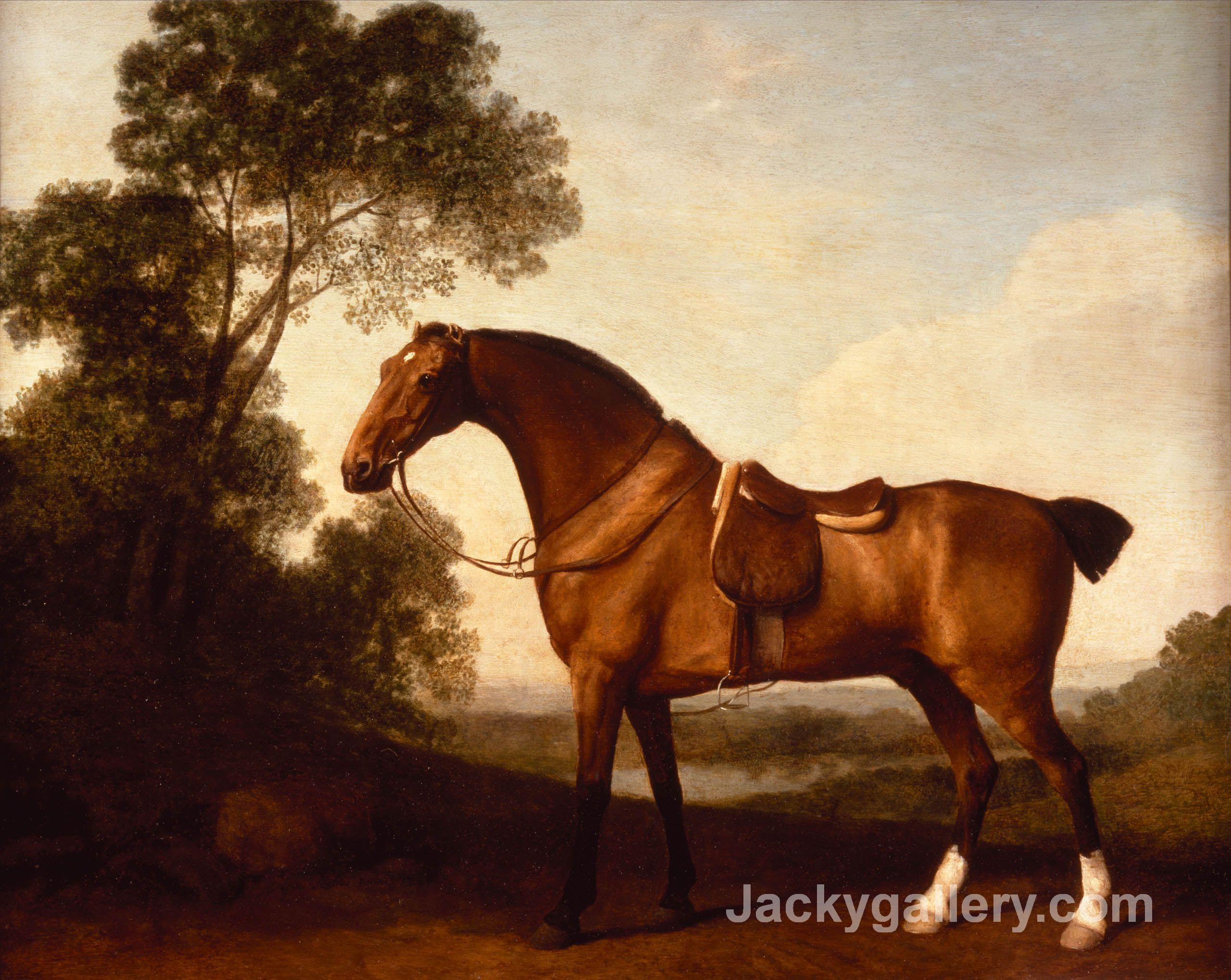 A Saddled Bay Hunter by George Stubbs paintings reproduction