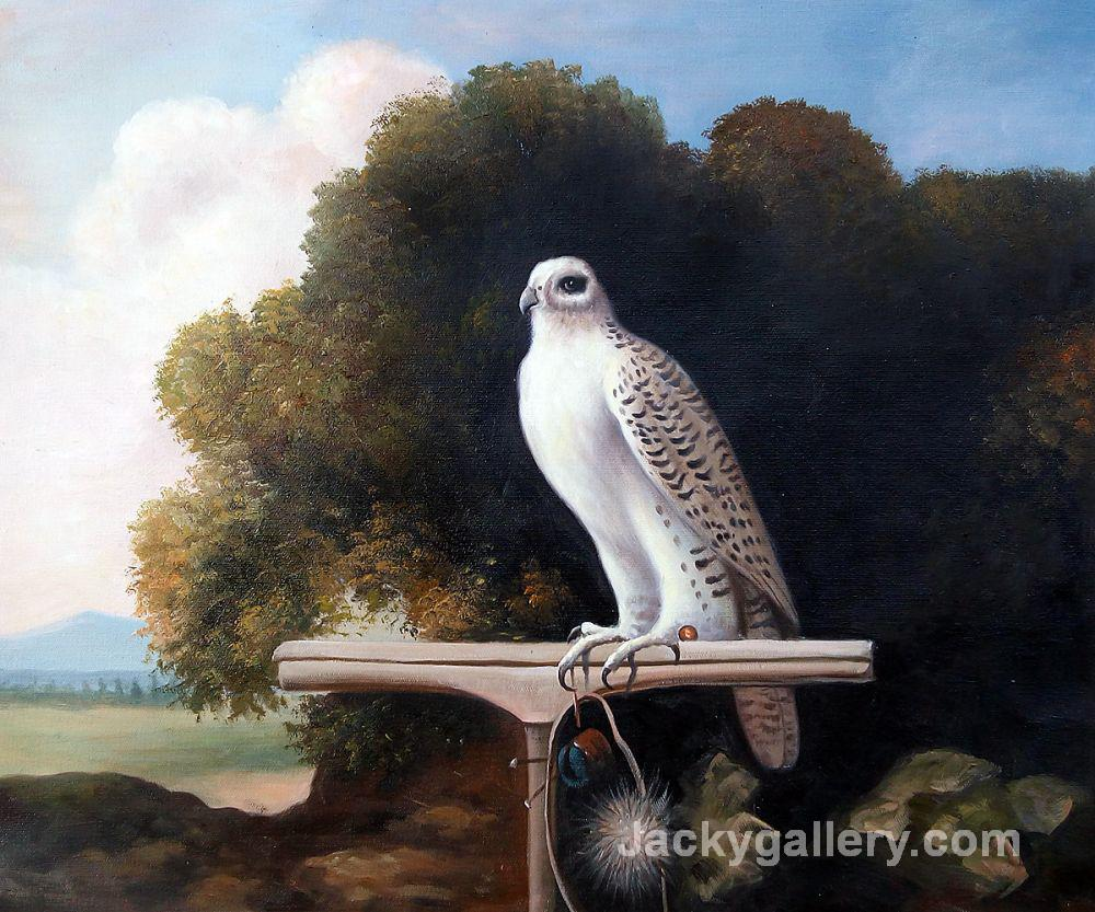 Greenland Falcon by George Stubbs paintings reproduction