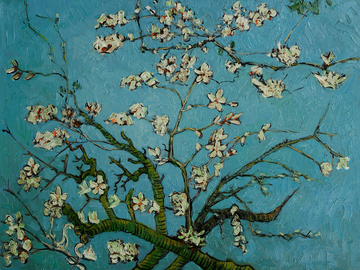Branches of an Almond Tree in Blossom by Vincent Van Gogh